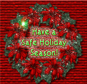A Safe Holiday Season